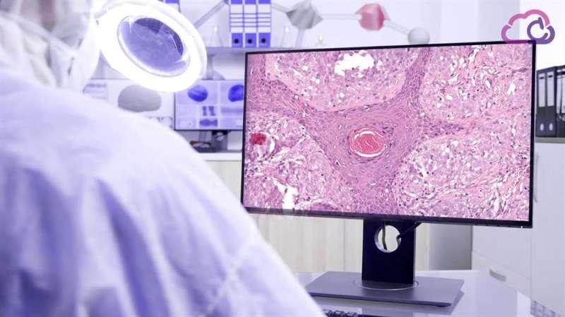 Un científico mira una imagen en una pantalla. EFE