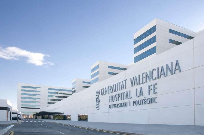 Hospital La Fe. /EPDA