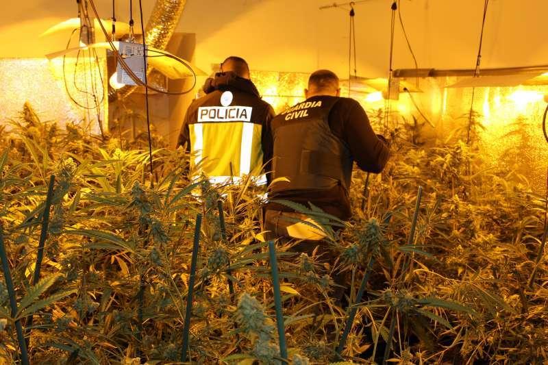 Operación contra el tráfico de drogas. EPDA