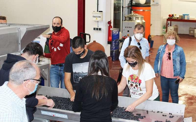 La Escuela de Viticultura de Requena aumenta un 15% su alumnado y refuerza la protección contra la Covid